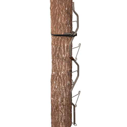 Summit The Vine™ Climbing Stick