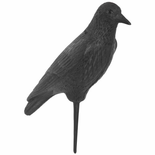 Game Winner 3-D Crow Decoy
