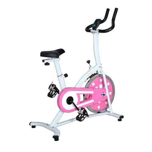 Sunny Health & Fitness P8100 Indoor Cycling Exercise Bike