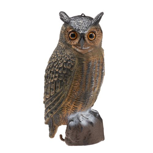 Display product reviews for Game Winner® 3-D Owl Decoy