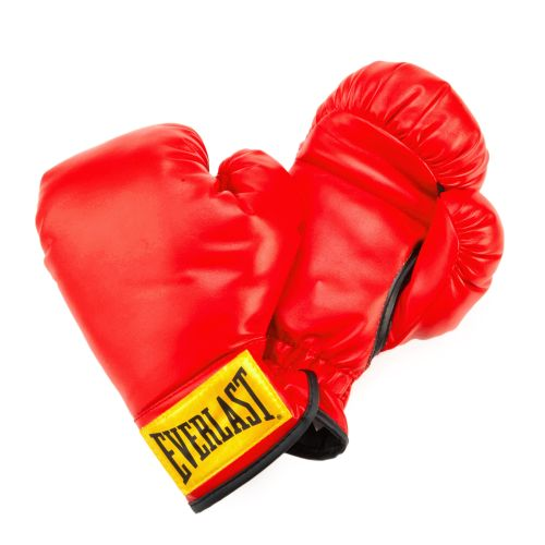 Everlast  Youth PVC Boxing Gloves