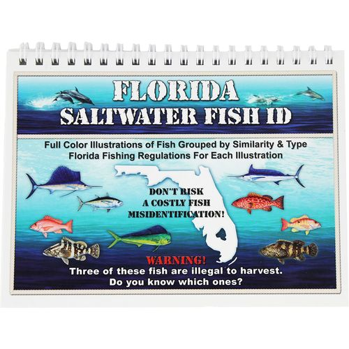 Florida saltwater fish id book academy for Florida saltwater fish identification