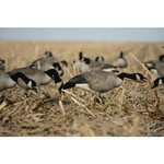 Greenhead Gear® Commercial-Grade 3-D Full-Body Honkers Canada Goose Decoys 6-Pack - view number 5