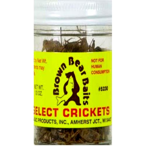 Display product reviews for Brown Bear Baits 1/2 oz. Preserved Crickets