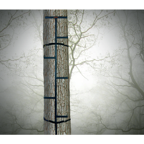 Display product reviews for Game Winner 20 ft Offset Tree Climbing Sticks