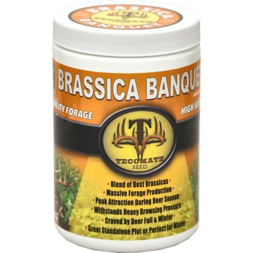 Display product reviews for Tecomate Brassica Pounder 1 lb. Food Plot Seed