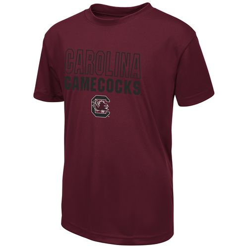 Colosseum Athletics Boys' University of South Carolina Team Mascot T-shirt