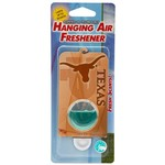 R and R Imports NCAA Scented Oil Hanging Air Freshener