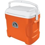 Igloo Contour™ 30-qt. Cooler