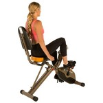Paradigm Exerpeutic Gold 525XLR Folding Recumbent Exercise Bike - view number 4