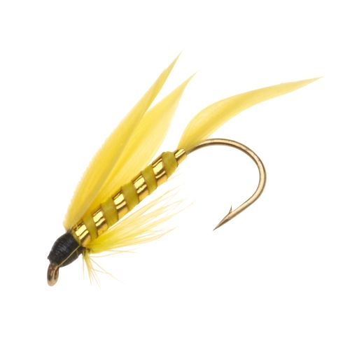 Superfly Yellow Sally 1/2 in Wet Flies 2-Pack