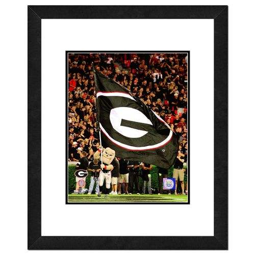 "Photo File University of Georgia 2008 Mascot 8"" x 10"" Photo"
