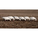 Greenhead Gear® Pro-Grade 3-D Full-Body Snows and Blues Feeder Decoys 6-Pack - view number 6