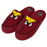Forever Collectibles™ Kids' University of South Carolina 2015 Mascot Slide Slippers