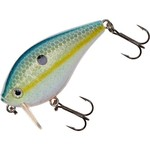 Color_Sexy Shad 03