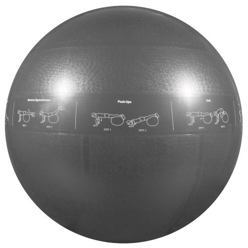 GoFit Adults' 75 cm Professional Grade Stability Ball - view number 1