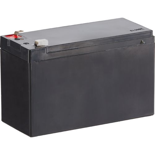 Game Winner®  12V 7 Ah Feeder Battery - view number 1