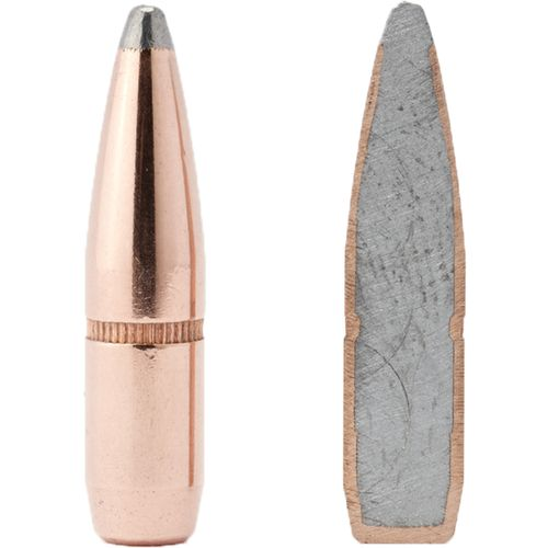 Hornady InterLock® BTSP .25 117-Grain Bullets - view number 1