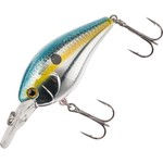 Color_Sexy Shad 02