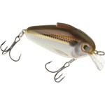 Color_Gizzard Shad