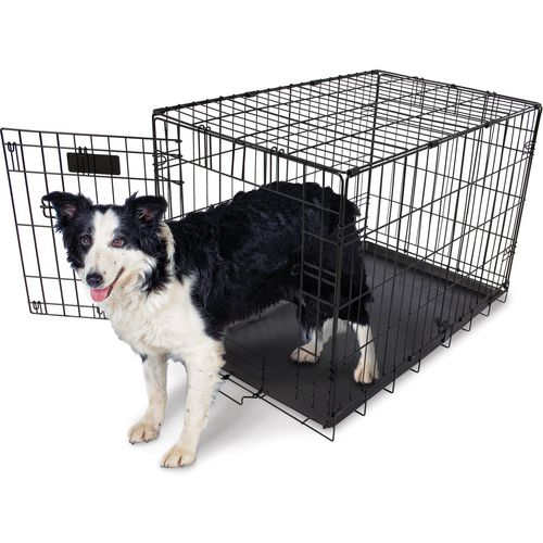 Aspen Pet 30 in Home Training Wire Kennel