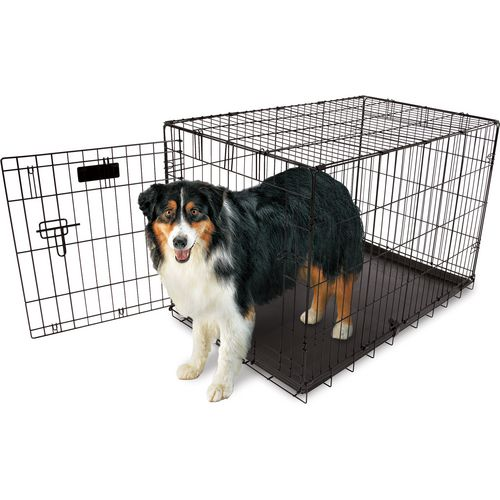 Aspen Pet 36 in Home Training Wire Kennel