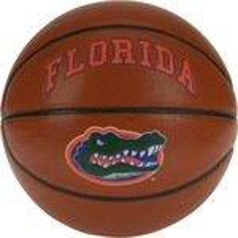 Rawlings® University of Florida Triple Threat Basketball