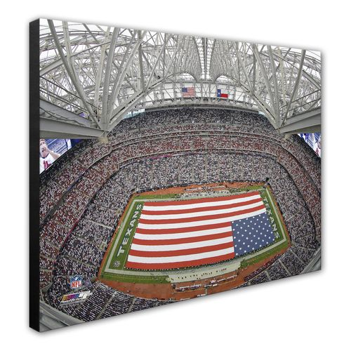 Photo File Houston Texans Reliant Stadium 8' x 10' Photo