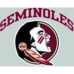 "Stockdale Florida State University 8"" x 8"" Vinyl Die-Cut Decal"