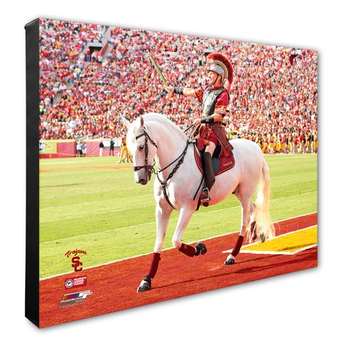 Photo File University of Southern California Mascot Stretched