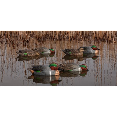 Display product reviews for Avian-X Topflight Green-Winged Teal Decoys Set