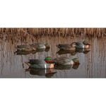 Avian-X Topflight Green-Winged Teal Decoys Set - view number 1