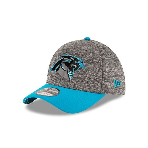 New Era Men's Carolina Panthers 39THIRTY® 2016 NFL