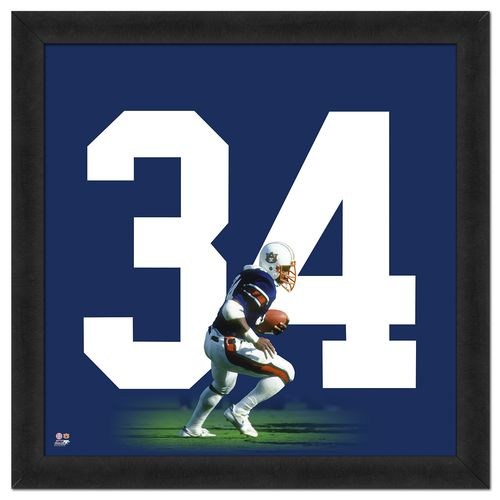 "Photo File Auburn University Bo Jackson #34 UniFrame 20"" x 20"" Framed Photo"