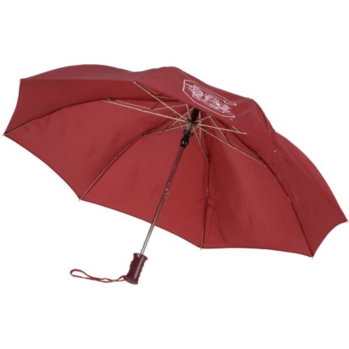 Storm Duds University of South Carolina 42 in Automatic Folding Umbrella - view number 2