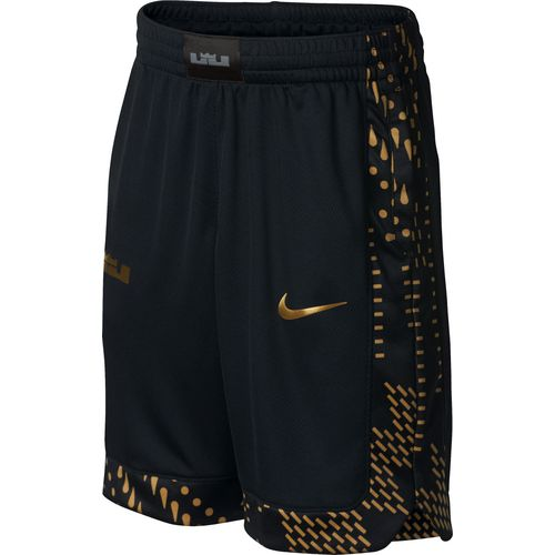Nike Boys' LeBron James Basketball Shorts
