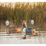 Game Winner® Carver's Edge Series 3-D Pintail Duck Decoys 6-Pack - view number 3