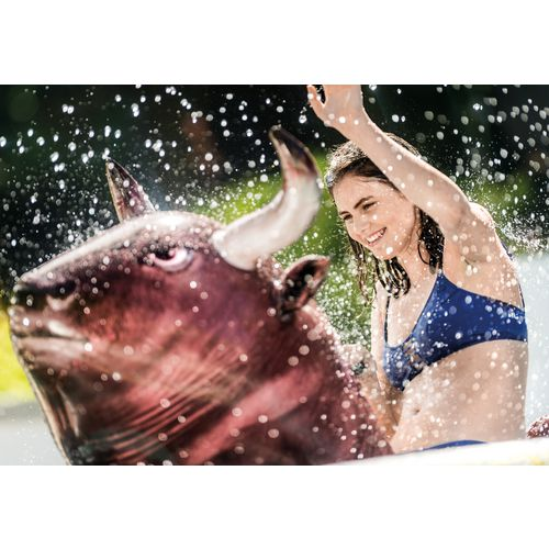 INTEX Inflate-A-Bull Pool Float - view number 4