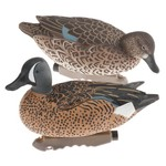Game Winner® Carver's Edge Series 3-D Blue-Winged Teal Duck Decoys 6-Pack - view number 1