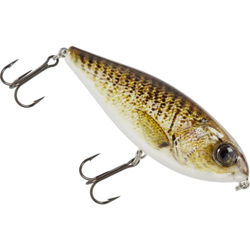 H2O XPRESS Double Take 4 in Topwater Lure