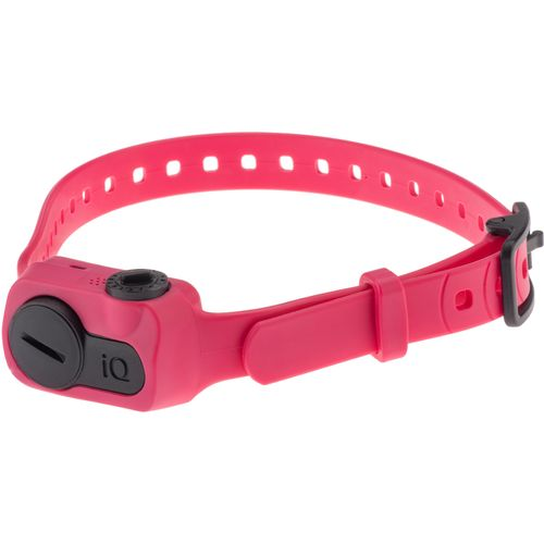 Dogtra iQ No-Bark Electronic Dog Collar