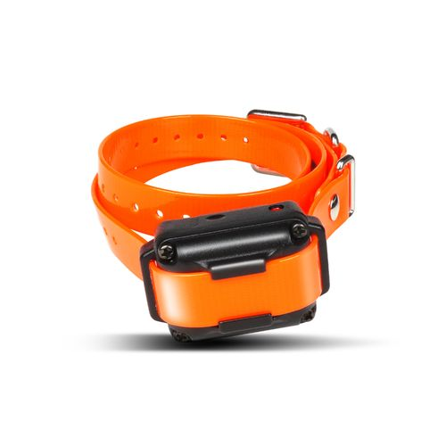 Dogtra iQ Plus Additional Receiver Training Collar